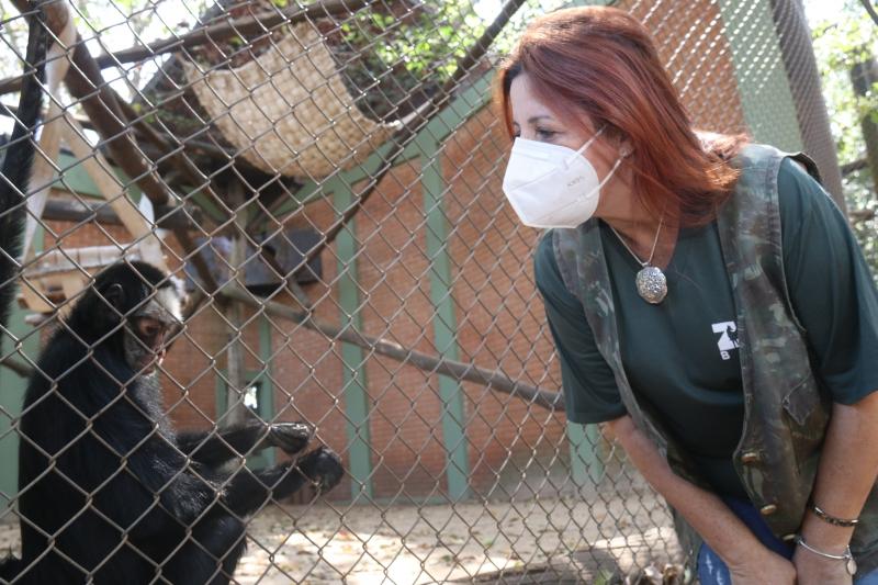 Número de visitas no Zoo surpreende e nova gestão focará em infraestrutura